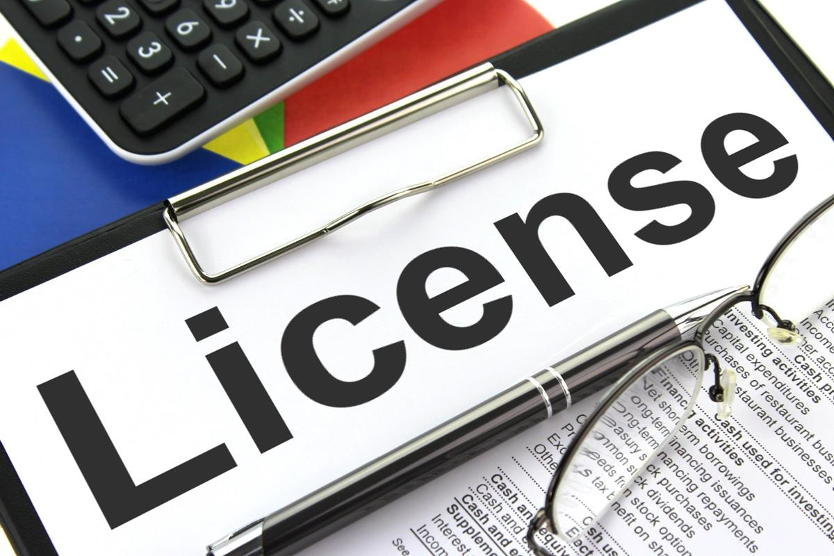 What is the procedure for obtaining a professional trade licence in Dubai?